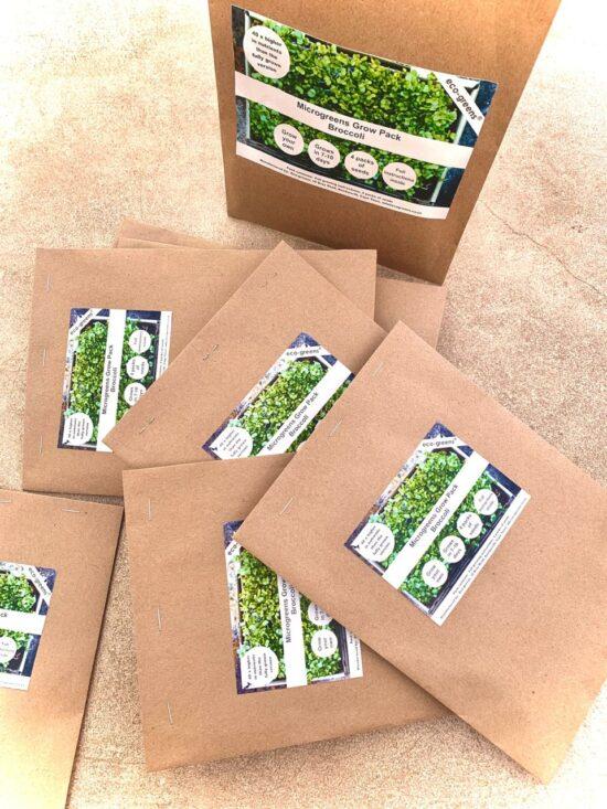 Broccoli Microgreens Seedlings